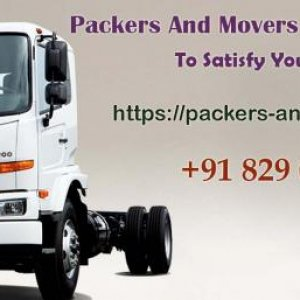 #Household #Shifting in Delhi