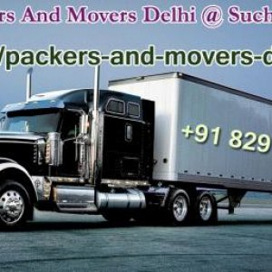 Movers And Packers in #Delhi